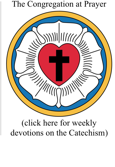 Devotions on Catechism